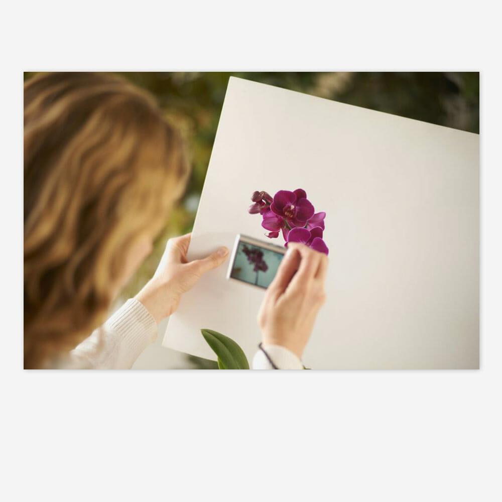 Anna Mason Painting Photos