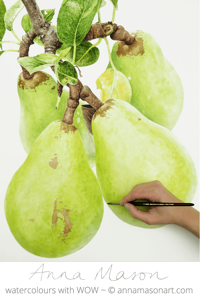 Pear 2 for Artists and Illustrators