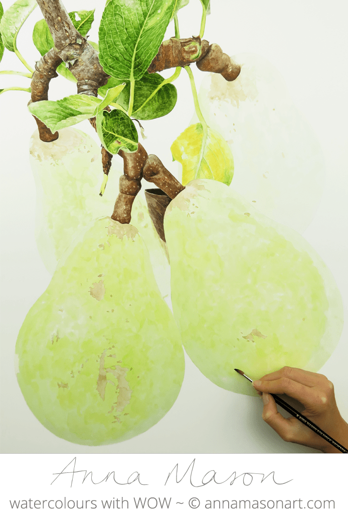 Pear 1 for Artists and Illustrators magazine