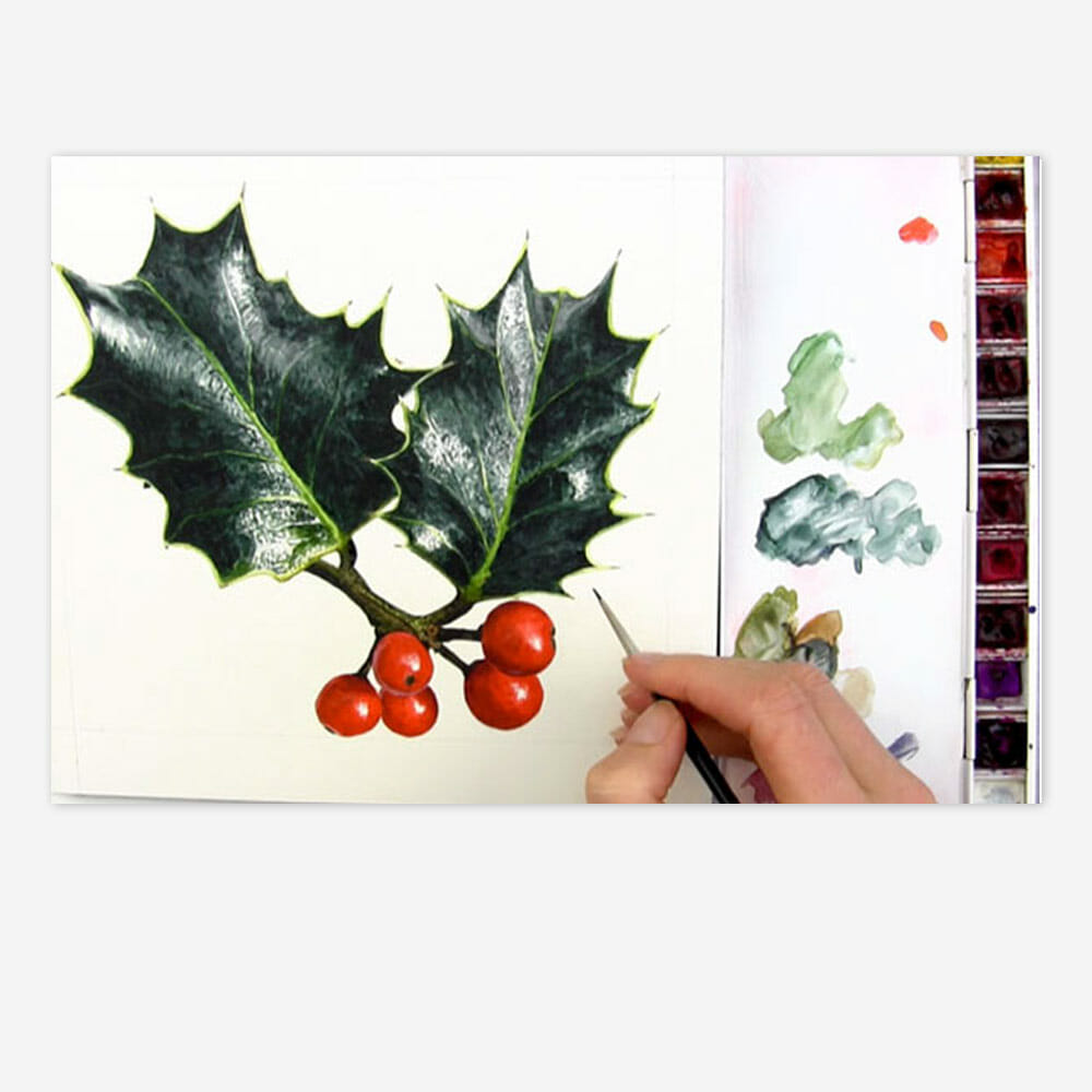 Realistic Holly Leaves