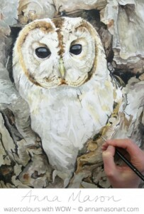 The Tawny Owl is coming to life now
