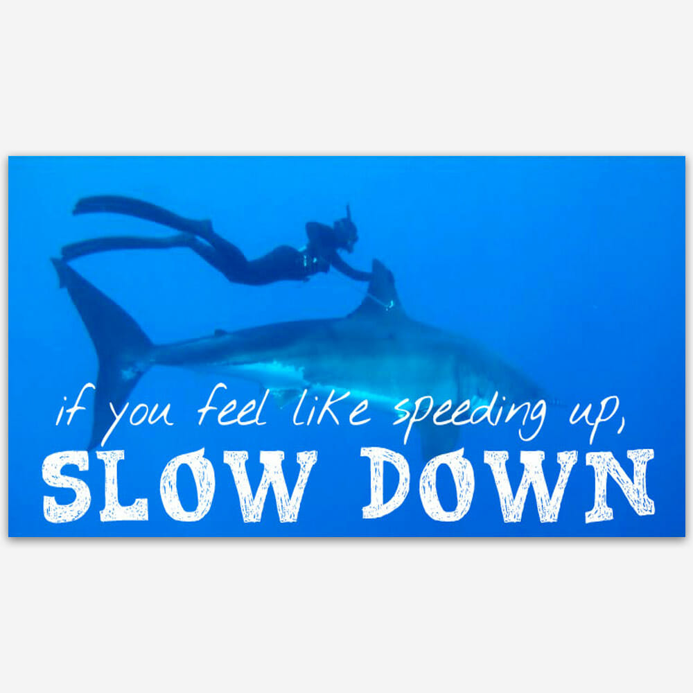 If you feel the need to speed up, slow down.