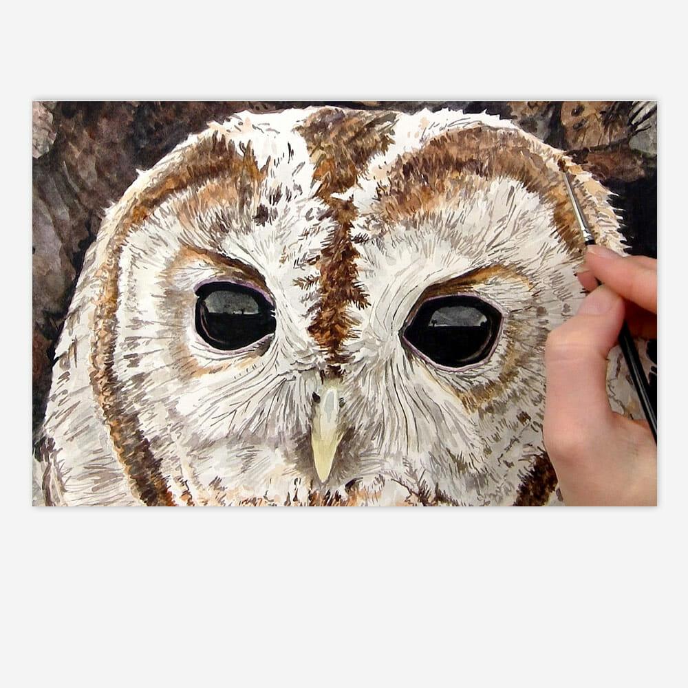 Shiny Owl Eyes