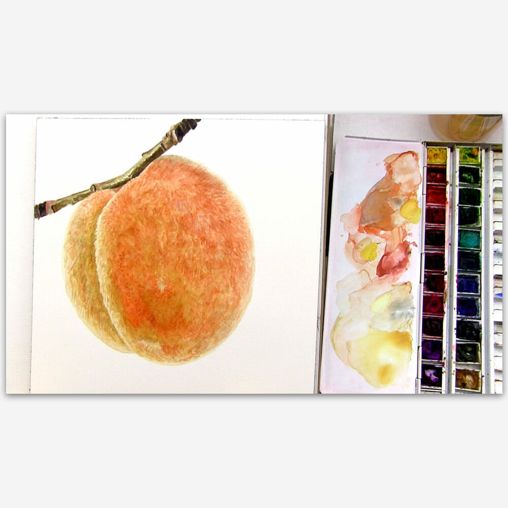 How to paint a realistic branch in watercolour