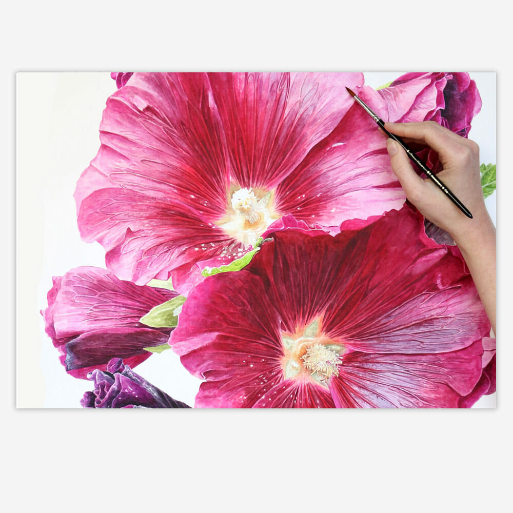 Painting a big Hollyhock