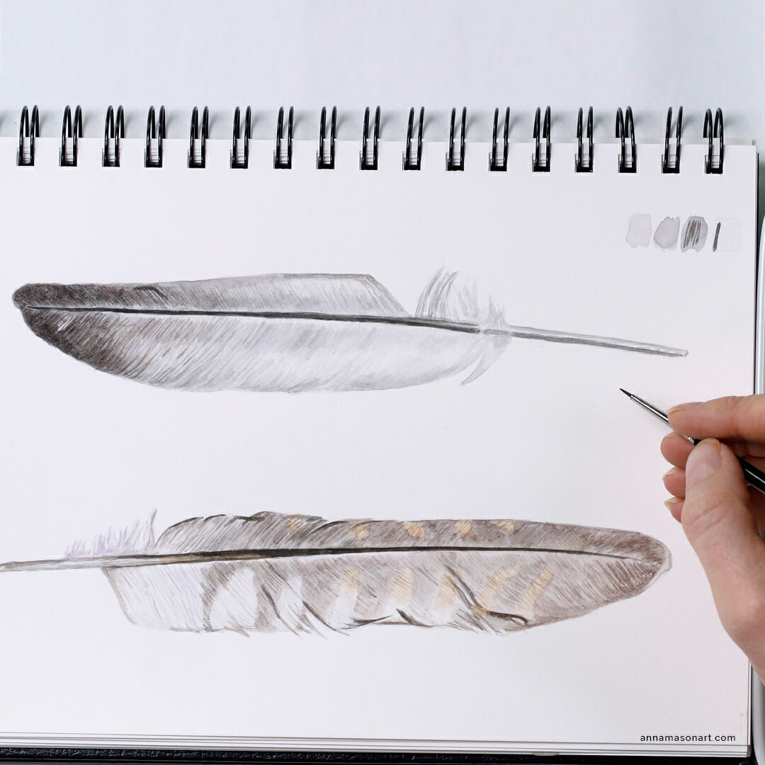 paint feathers