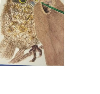 maxine hand w owl2